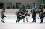 Hockey Concussions